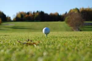 Golf ball palm gardens Jan blog 1